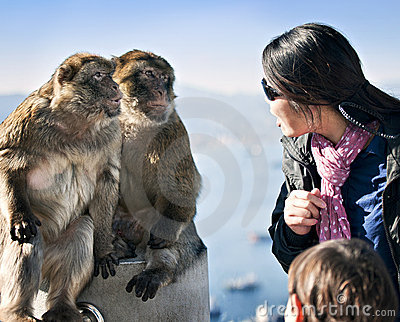 Apes Talking with Woman