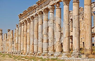 Aphamia ruins, Syria