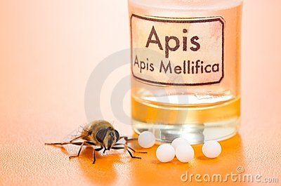 Apis Mellifica homeopathic pills, poison and bee