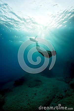 Apnea - Freediving na água de turquesa