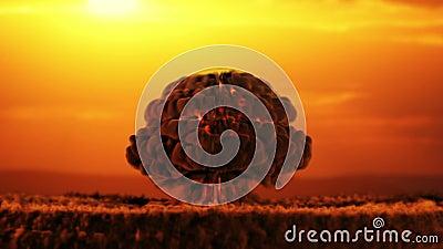 Apokalypens