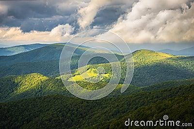 Appalachian Trail at Roan Mountain State Park
