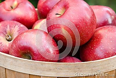Appelen in een Mand