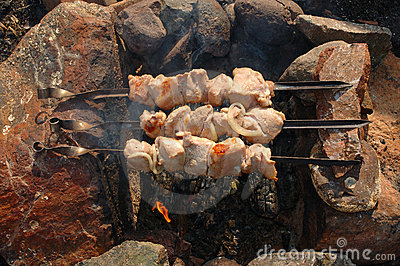 Appetizing roasted shish kebab (shashlik).