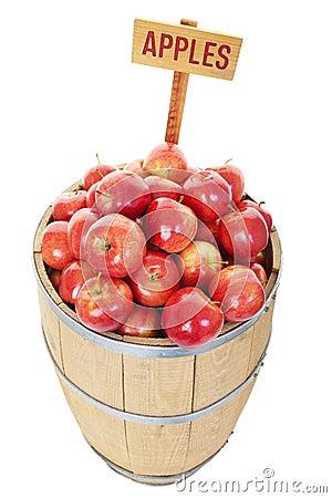 A rotten apple spoils the barrel essay