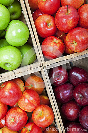 Apple Bins