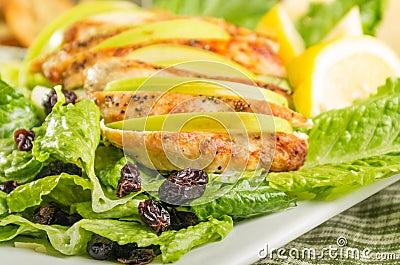 Apple cranberry chicken salad