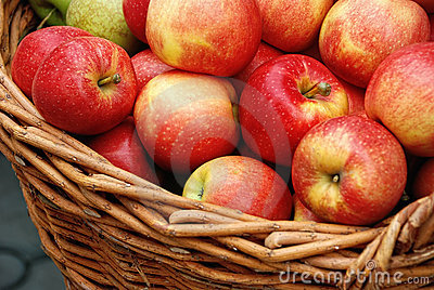 Apple crop in a basket