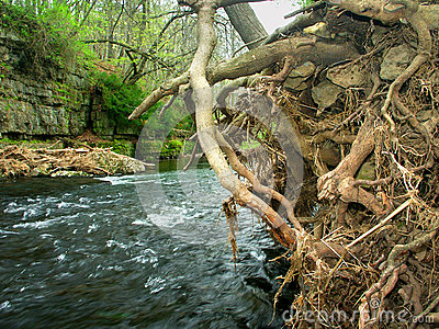 Apple-Fluss-Schlucht-Nationalpark Illinois