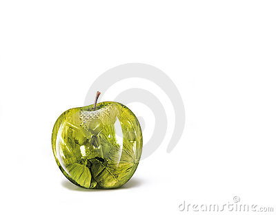 Apple illustrations