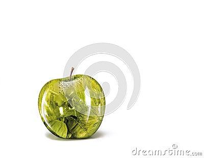 Apple illustrations