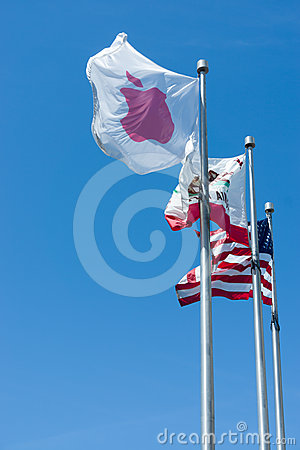 Apple Inc Flag Editorial Stock Image