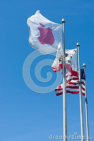 Apple Inc Flag Editorial Stock Image