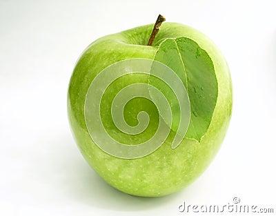 Apple - leaf