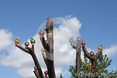 glass apples
