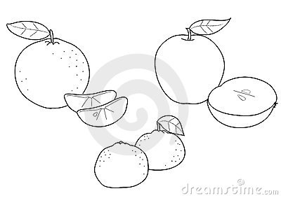 tangerine coloring pages | Apple Orange And Tangerine, BW Royalty Free Stock Photos ...