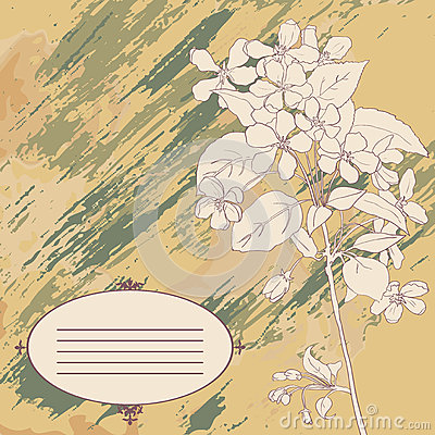 Apple tree branch and label on vintage background