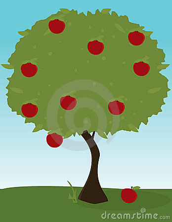 Apple tree image