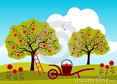 Apple Tree Orchard Royalty Free Stock Photos - Image: 23775778