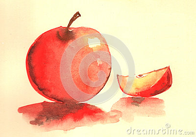 Apple water color illustration