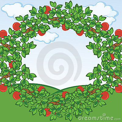 Apples frame