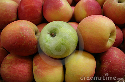 Apples, One Green