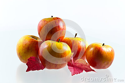 Apples with wine leaves