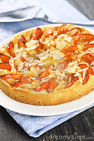 Free Apricot And Almond Pie Royalty Free Stock Images - 13692169