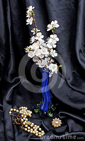 Apricot flowers in a vase