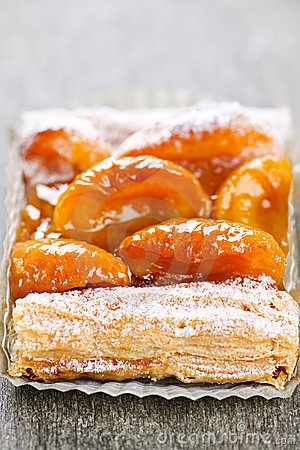 Free Apricot Fruit Strudel Royalty Free Stock Photography - 13620297