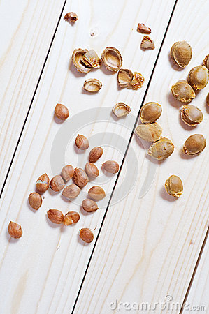 Apricot seeds and shells