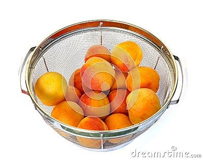 Apricots 012