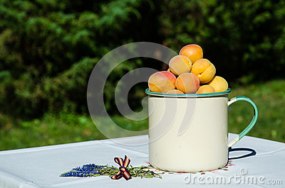 Apricots on decorated table