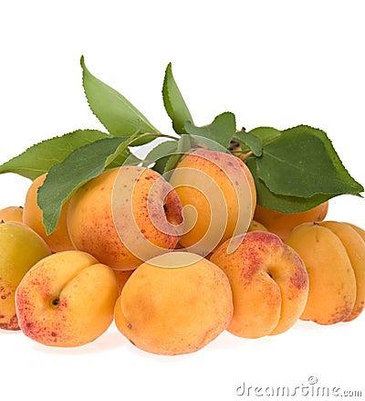 Apricots lie a heap