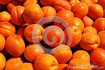 Apricots texture