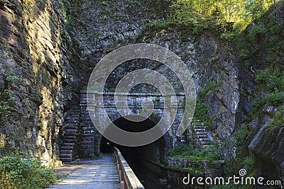 Łapy łapy tunel