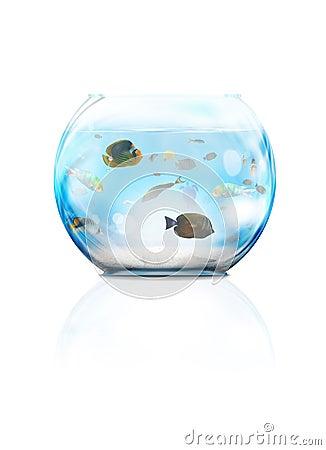 Aquário de vidro
