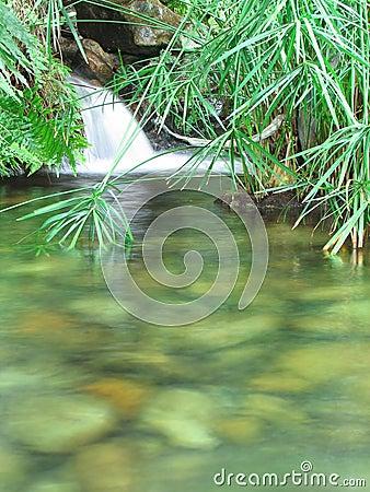 Free Aqua 6 Stock Image - 1192141