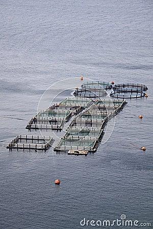 Free Aquaculture Royalty Free Stock Photo - 15489835