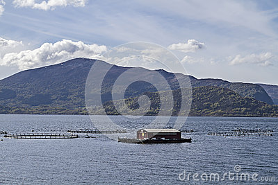 Aquaculture norway