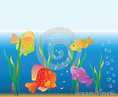 Aquarian Small Fishes Are Fed. Stock Photo - Image: 15011640