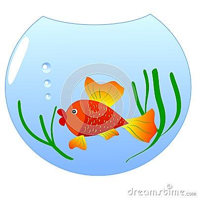 Free dating site fish bowl