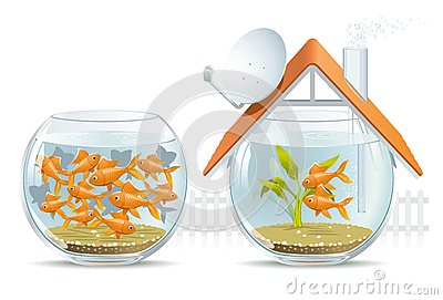 Aquarium home & social housing