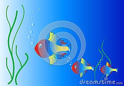 Aquarium and neon fish