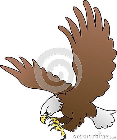 Aquila calva con le ali spante