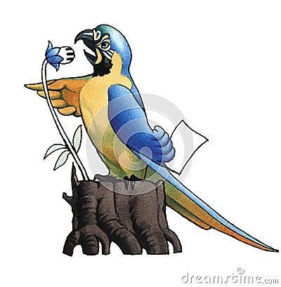 Ara (macaw)