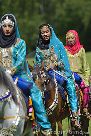 Arab horse Editorial Stock Image