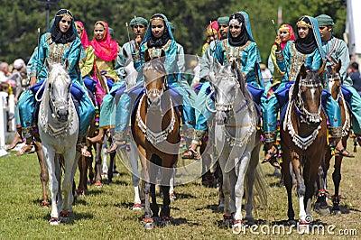 Arab horse Editorial Stock Image