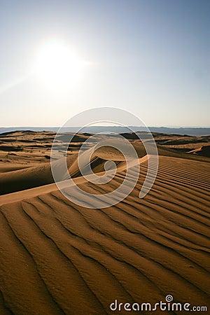 Free Arabian Desert -3 Royalty Free Stock Images - 15409589