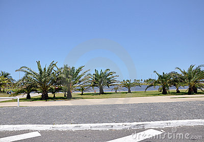 Aracaju Public Park Editorial Photo